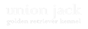 UJ_logo_colonna_feher_300