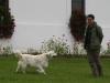 hrk-klubnap-2010-09-11-005