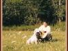 Jojó 2001